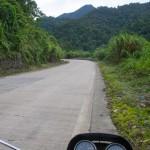 jungle vietnam
